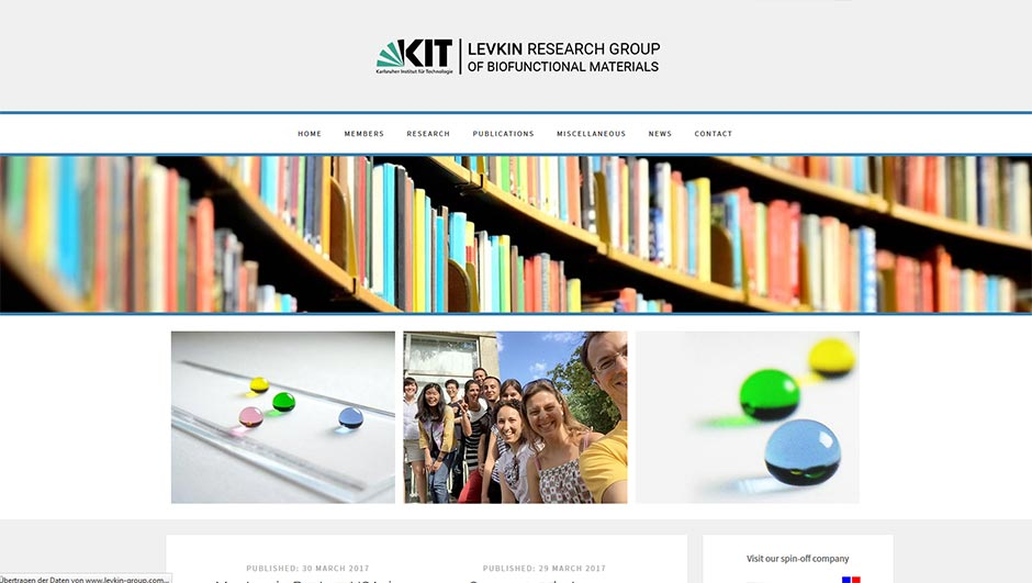 KIT Levkin Research Group